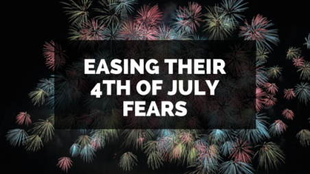 Easing their 4th of July FearsBLOGTITLE
